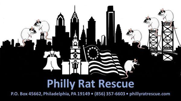 PhillyRatRescue R.