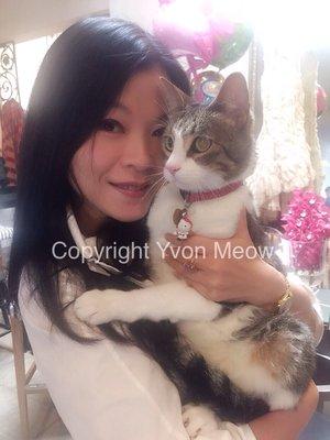 Yvon Meow J S.
